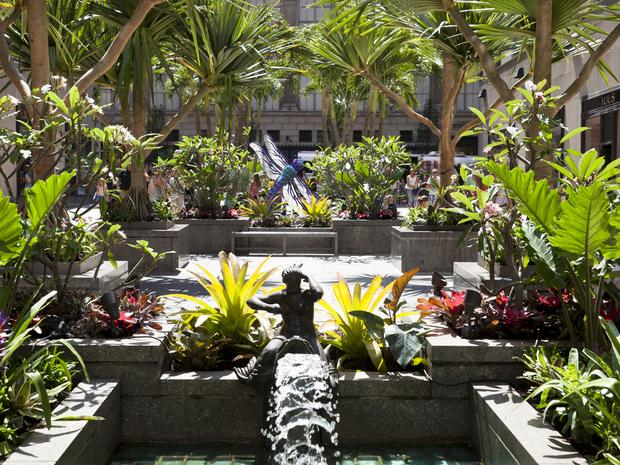 Colorful flowers, plants, trees, and greenery at the Channel Gardens.