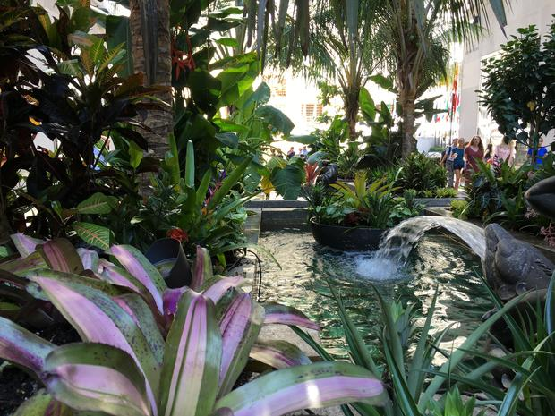 A view from behind the greenery of water and people walking around at the Channel Gardens at Rockefeller Center.