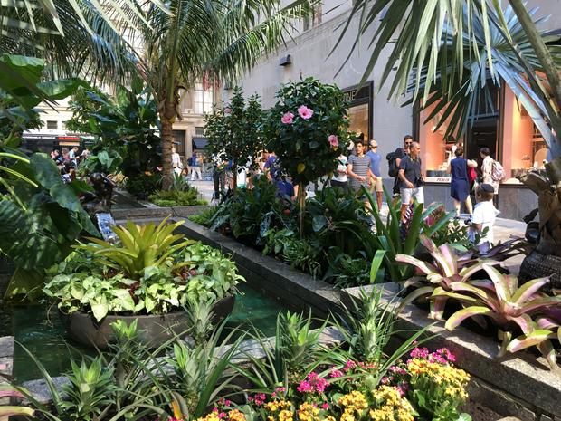 People walking and observing the Channel Gardens pond and greenery.