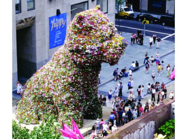 A giant puppy made of over 70,000 flowers over a steel armature.