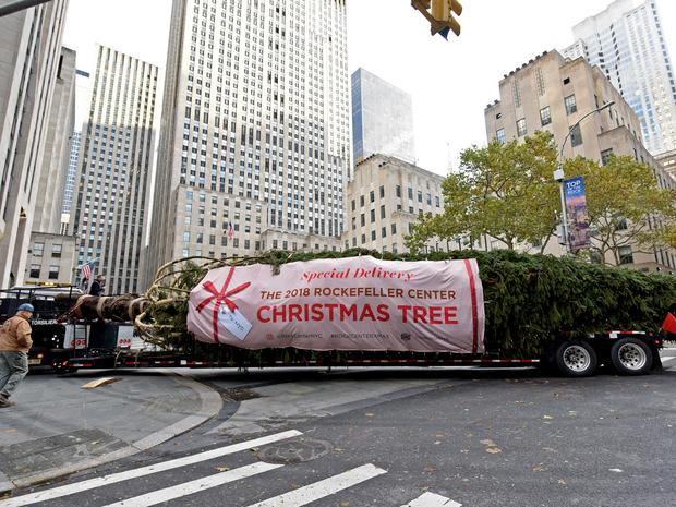 A close-up of the 2018 Rockefeller Center Christmas tree arriving in New York City.