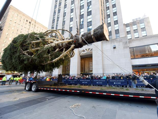 A close-up of the Christmas tree being lifted off of the truck in front of Rockefeller Center while hundreds of people watch in awe.