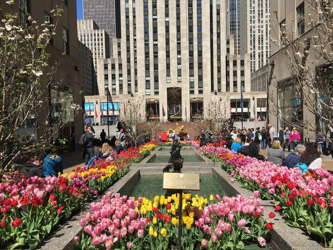 Mother's Day at Rock Center